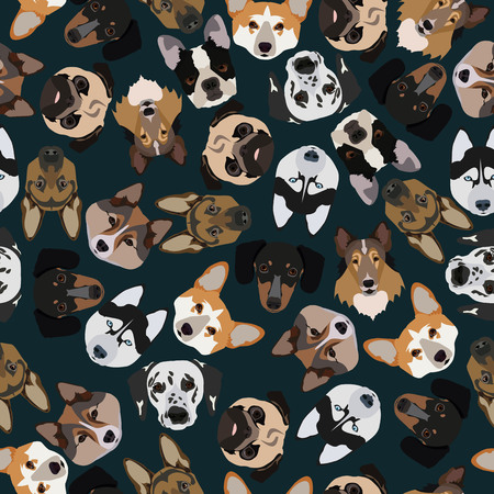 pedigree: flat dark seamless pattern pedigree dogs in vector format eps10