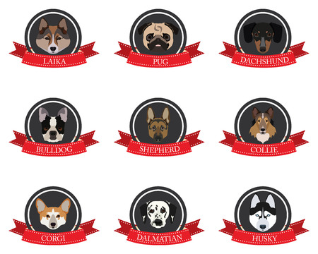 pedigree: flat icons of pedigree dogs in vector format eps10