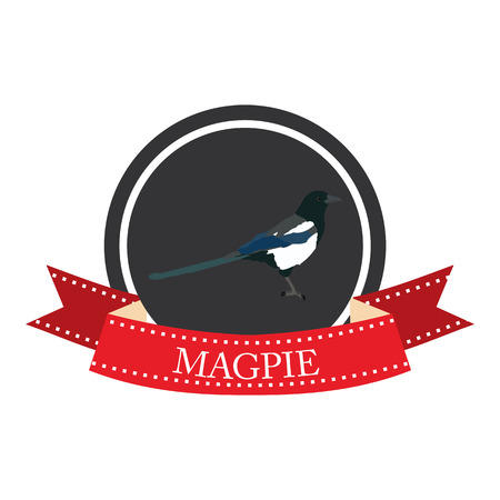 magpie: flat icon magpie in vector format eps10