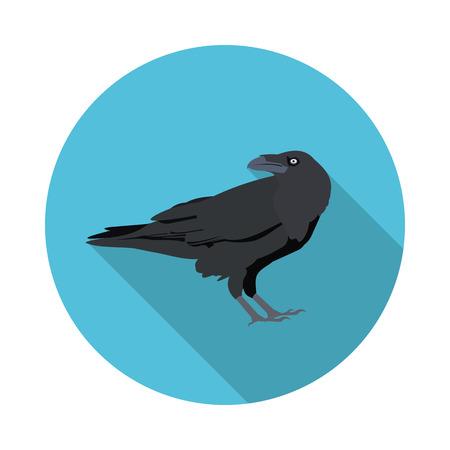 corvus: flat icon Raven in format Illustration