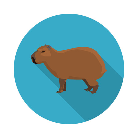 flat icon a capybara in vector format