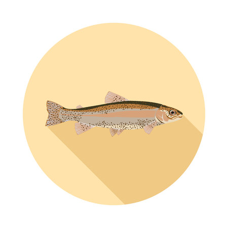 common carp: flat icon natural trout