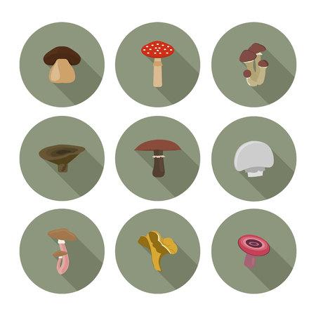 poison: set of flat icons mushrooms