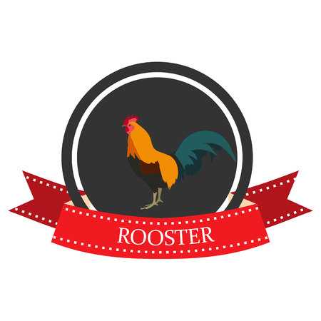 flat icon of a rooster with the name Illustration