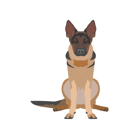 flat illustration of a dog Illustration