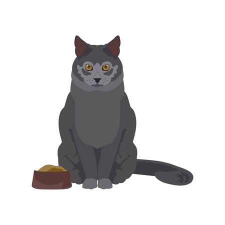 flat illustration of a cat Vectores
