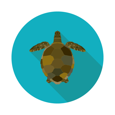 Flat sea turtle icon in vector format with shadow illustration.