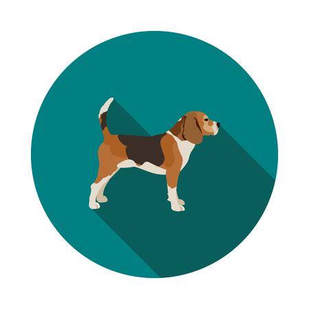 Flat dog Beagle icon