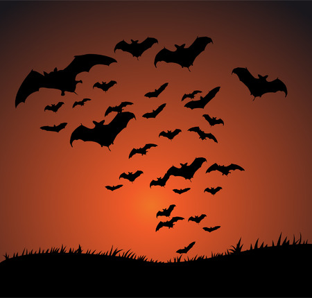 Flying bat Halloween background