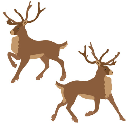 reindeers Stock Vector - 5860433