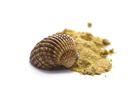 sours: Summer concept : shell and sand isolated on white