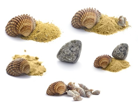 sours: Summer concept : Collection of  shells, stones and sand isolated on white Stock Photo