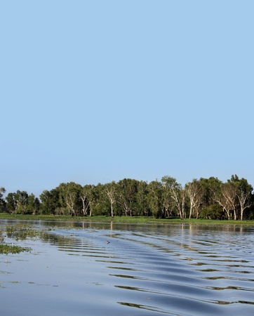 Australian billabong background