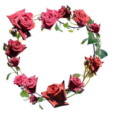 Heart shaped crown of red roses isolated on white