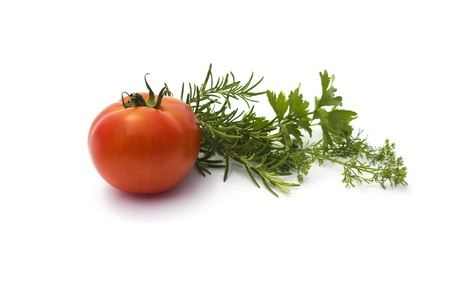 various herbs and tomato isolated on white Stock Photo - 20899686