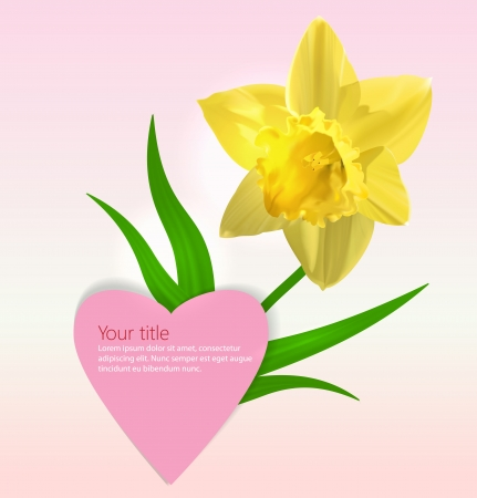 Vector Valentines background with Narcissus flower photo
