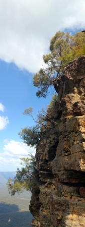 old people walking: Blue Mountains : Trees on high rock