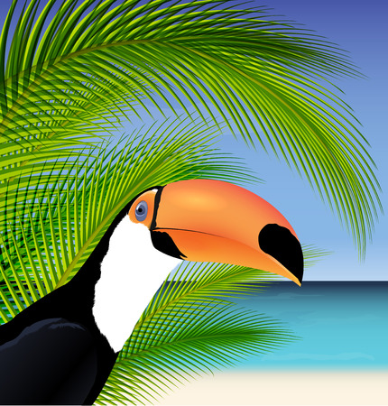 exoticism: Vector Exotic trip card  with palm tree and Toucan Illustration