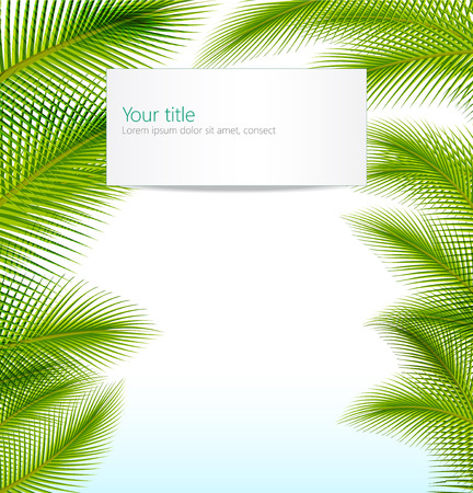Exotic trip background with palm tree leaves photo