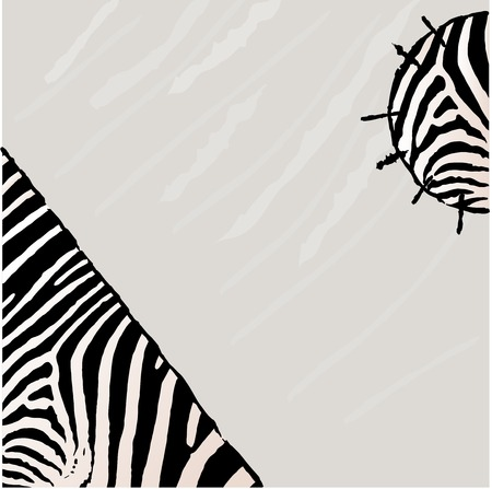 photographic effects: Abstract zebra background. Textile Grunge style Stock Photo