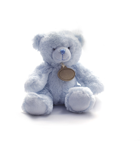 Small Blue Teddy Bear Toy photo