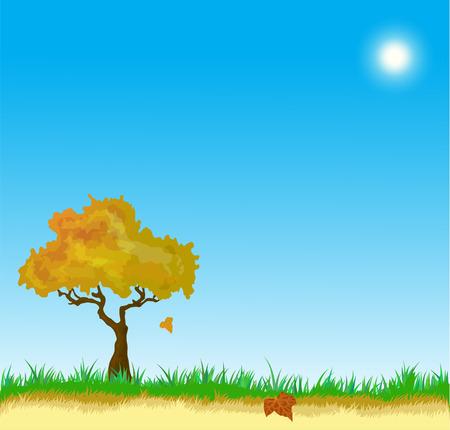 aronia: Vecor landscape with Golden  Autumn leaves  tree Illustration