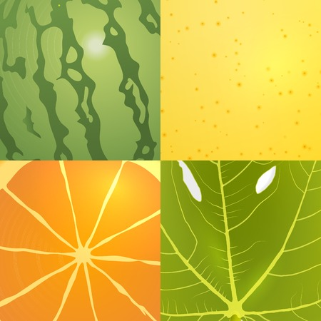 fig leaf: collection of vector fruits textures