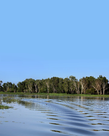 nt: Background of Australian billabong in Northern Territory.