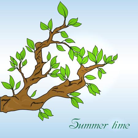 oak leaves: Oak leaves banner Illustration