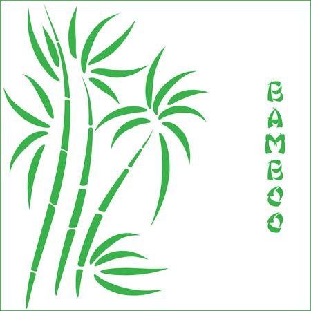 green bamboo: Green bamboo t Illustration