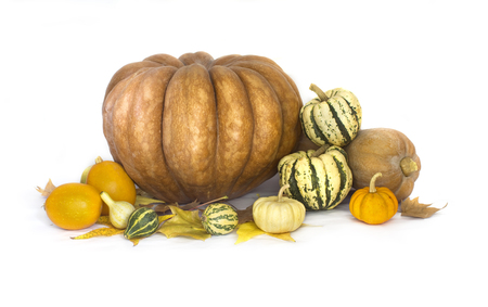 marrow squash: Autumn fruits and vegetable collection on white