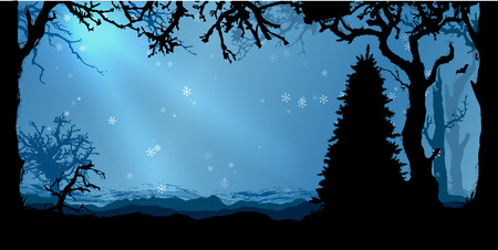 winter tree: Magic Night Winter forest vector background with tree silhouettes
