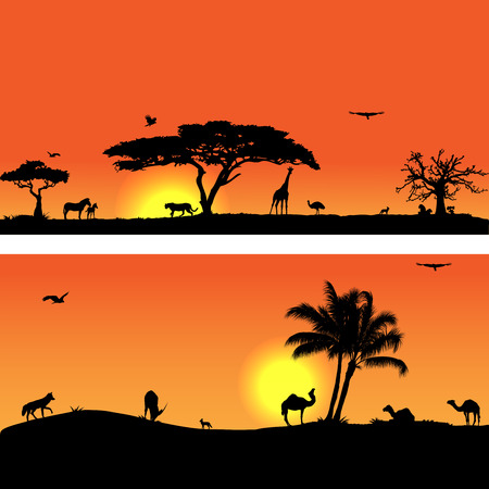 fauna: Collection of   with African fauna and flora Illustration