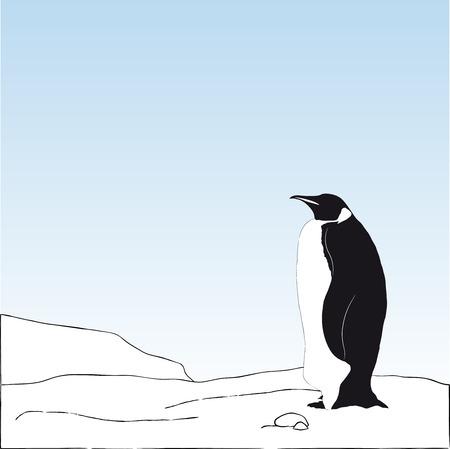 emperor: Vector background with  Emperor penguinstanding on snow
