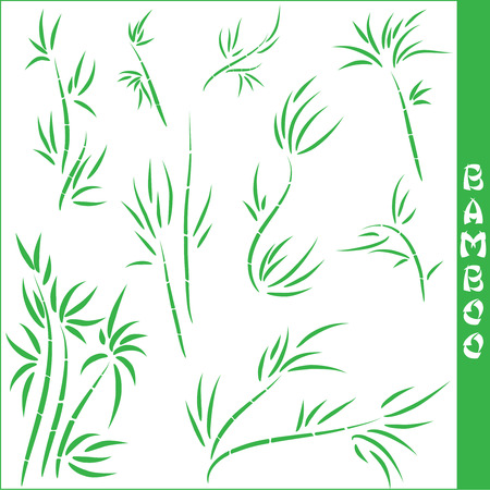 green plants: bamboo elements collection on white background