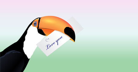 exoticism: Vector Toucan head with Valentine card