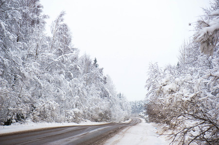 outdoor shot: Winter road in the forest. Outdoor shot. Stock Photo