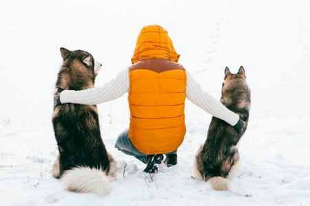 huskies: Man with dog Huskies back view sit on snow. Friendship animal dog and man. Outdoor.