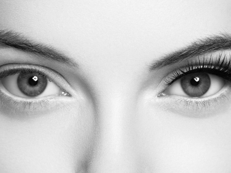 Eye lashes, lash extension woman  lashes close up macro monochrome. Studio shot. Foto de archivo