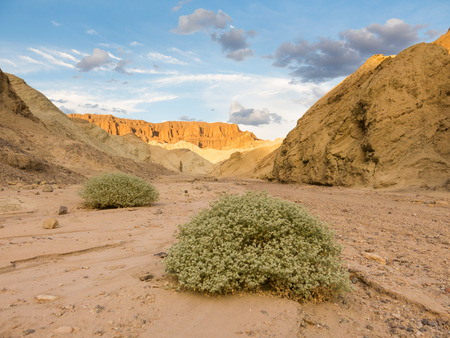 valley below: Sunset in Death Valley National Park, Golden Canyon trail