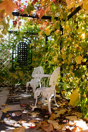 hammered: Vinecovered porch with hammered furniture