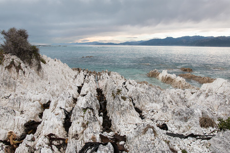 mudstone: Shoreline of limestone slabs, Kaikoura, New Zealand