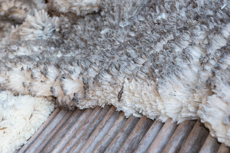 ovejas: Merino lana en la tabla de clasificación de madera