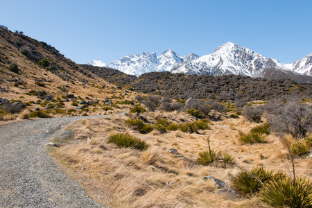 foothill: Foothill of mt. Cook at spring, Aorakimt. Cook National Park, New Zealand Stock Photo