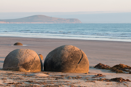 spherical: Two spherical rocks of Moeraki Boulders on sunrise, New Zealand