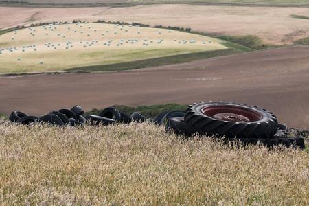 scrap heap: Heap of old tires on the field