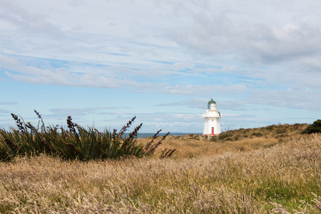 new zealand flax: Waipapa Point Lighthouse, Southland, New Zealand