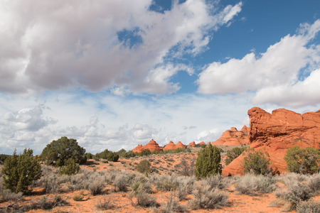 undulating: Undulating sandstone fromations of South Coyote Buttes, Utah USA