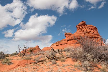 butte: Sandstone butte, Soyth Coyote Buttes, Utah, USA