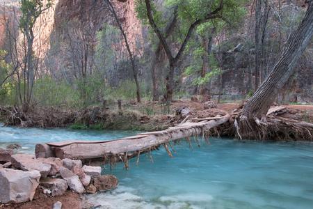 indian creek: Rustic wooden bridge over a small river, Supai, Arizona, USA